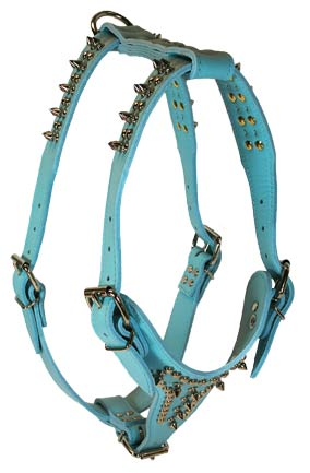 Baby Blue Signature Harness