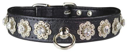 Leather Brothers Starburst Dog Collar
