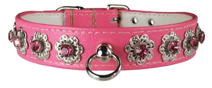 Leather Brothers Majestic Starburst Dog Collar