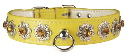 Leather Brothers Yellow Starburst Dog Collar