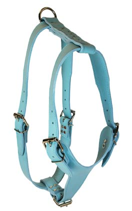 Baby Blue Signature Plain Leather Harness
